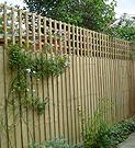 featherboard_panel_fencing_trellis_top
