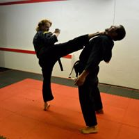"Martial Arts:  ""Should I do it?"""